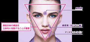 vista-shape_img_02